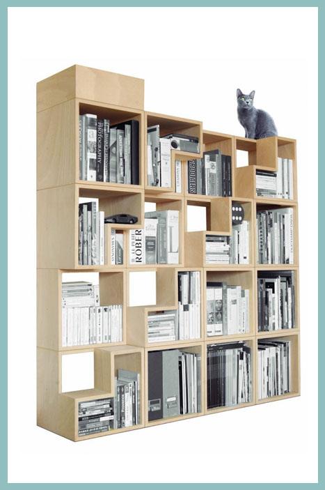 bibliothèque chat par Corentin Dombrecht