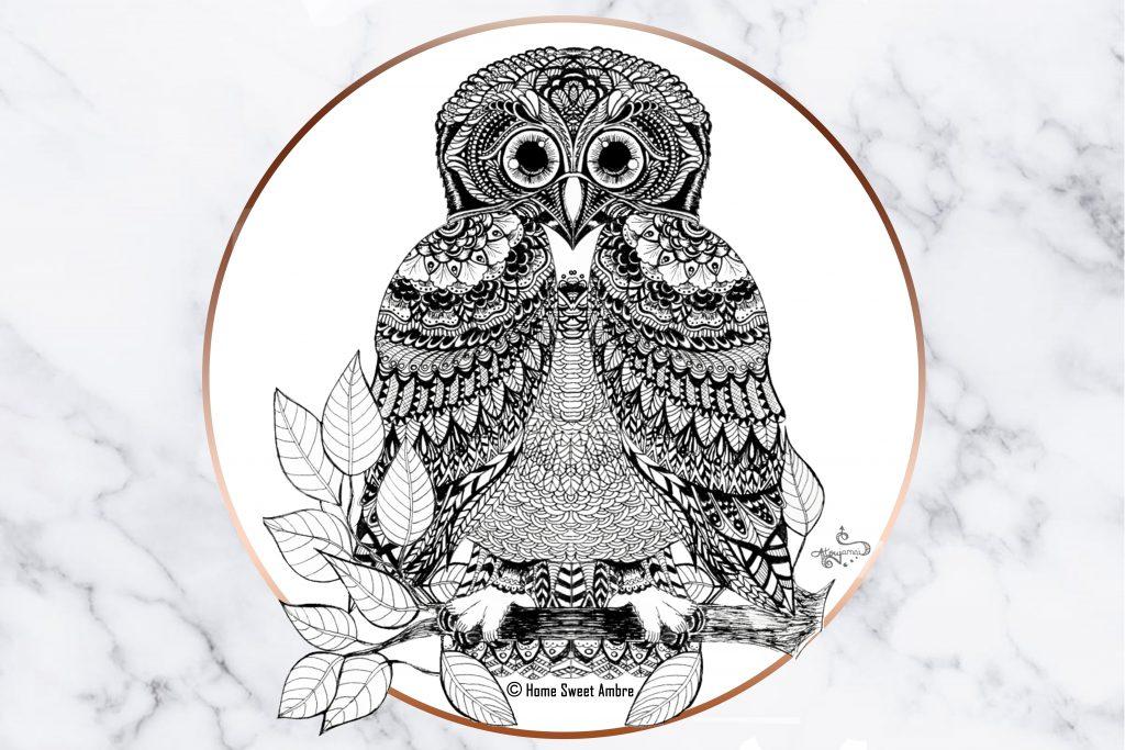 Chouette hibou dessin en noir et blanc home sweet ambre - Chouette a dessiner ...