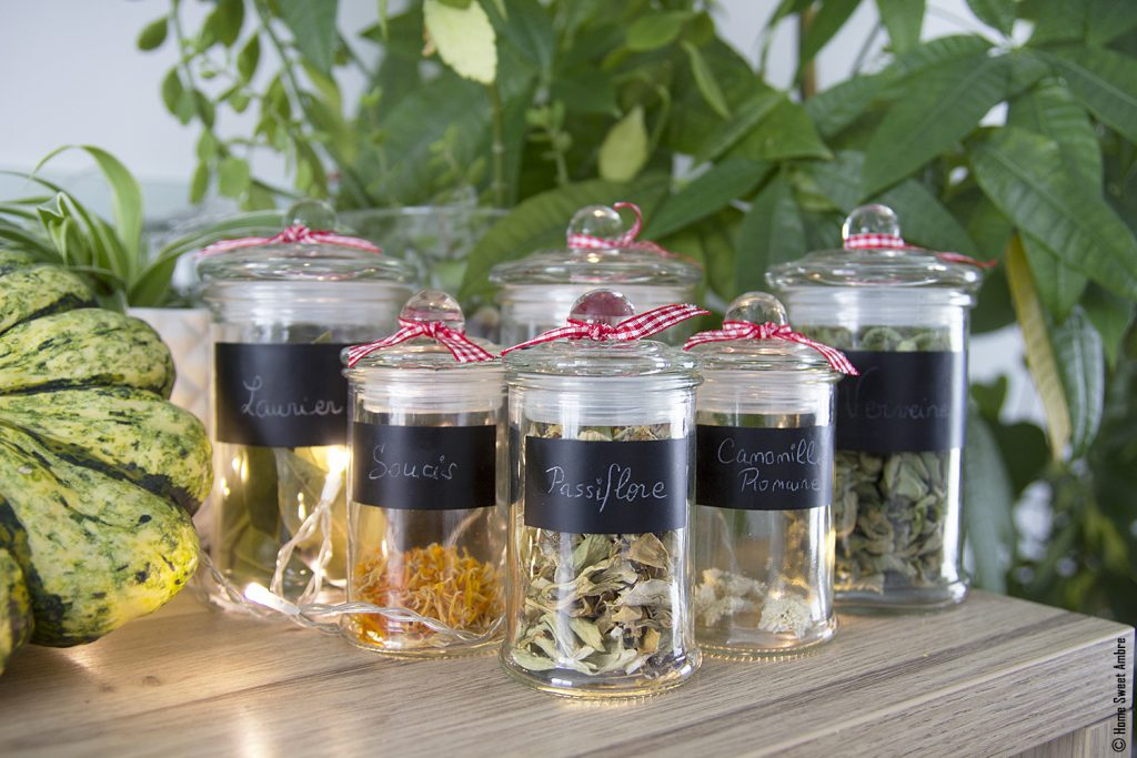 herbes à tisanes et infusions d'automne